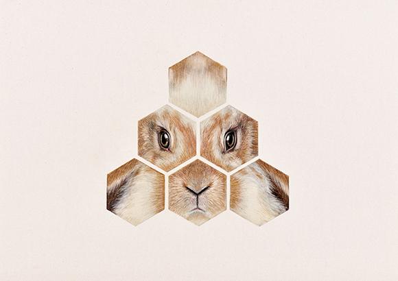 Animales-1 copia