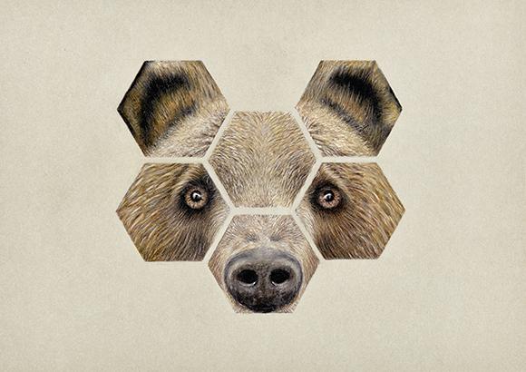 Animales-2 copia