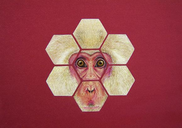 Animales-3 copia