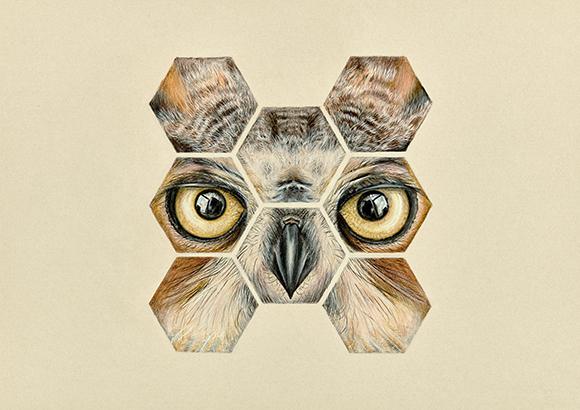 Animales-4 copia
