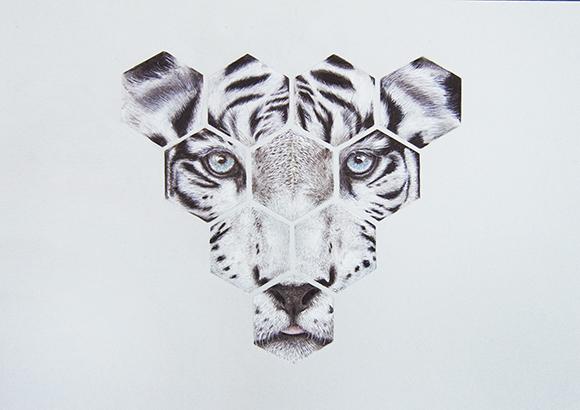 Animales-5 copia